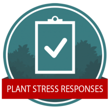 Stress Response Badge